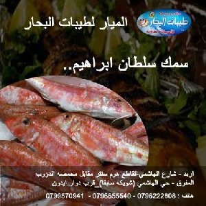 سمك سلطان ابراهيم ..طازج