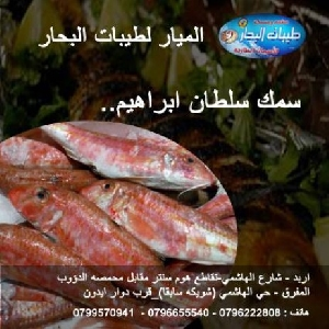 تواصي سمك سلطان ابراهيم…