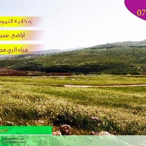 أراضي زراعية مميزة للبيع…