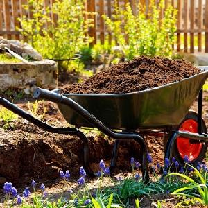 تسعير خدمات صيانة الحدائق…
