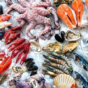Fresh Seafood Restaurant in Irbid 0796222808…