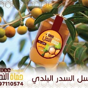 عسل سدر اردني اصلي - عسل…