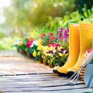 كل ما يلزم الزراعة والحدائق…