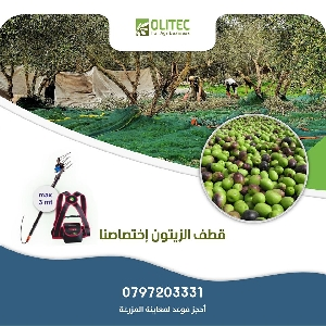 Specialize in Harvest olives Jordan - متخصصون…