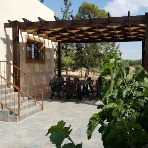 مزرعة للايجار اليومي في…