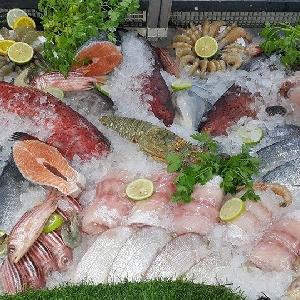 اسعار الاسماك في الاردن…