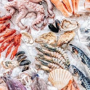 Seafood Supply @ Jordan - Al Mayar for Taybat…