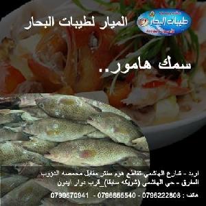 تواصي سمك هامور طازج يوميا…