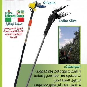 Olive Harvest Jordan - قطافة زيتون…