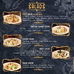 Salad menu Cozy Pizza Amman Jordan 065800222…