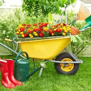 تنسيق وصيانة الحدائق المنزلية…