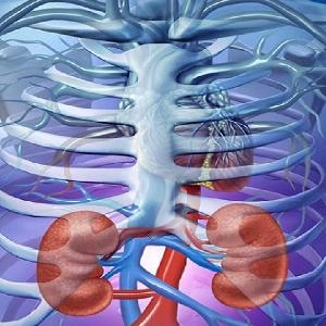 جراحة الكلى والمسالك البولية…