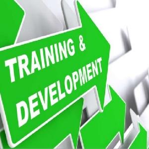 برامج التطوير المؤسسي